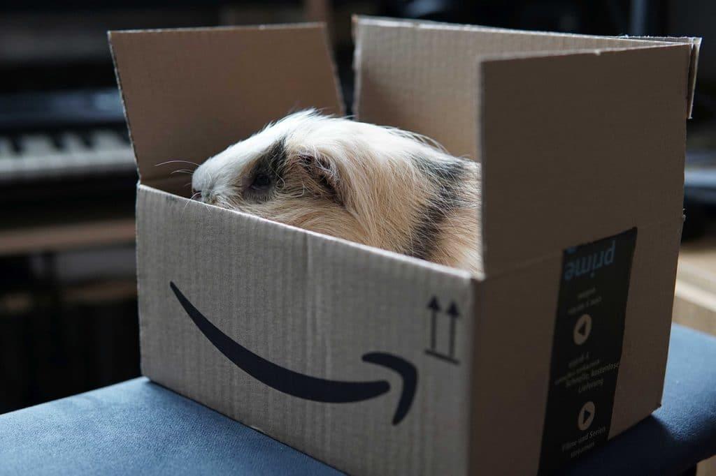 Se désabonner d'Amazon Prime